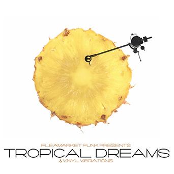 Tropical Dreams_342