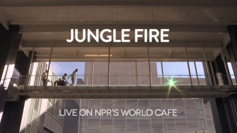 Jungle Fire  Live On NPR
