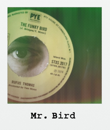 mr-bird-polaroid_800